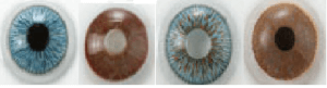 prosthetci contact lenses